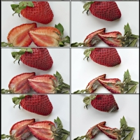 Grazer Fotoworkshops / Konzeptionelle Fotografie, Anrea Lang , Sequenz