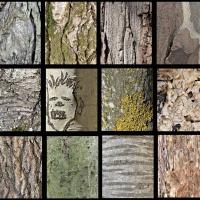 Grazer Fotoworkshops / Konzeptionelle Fotografie, Andrea Lang, Serie